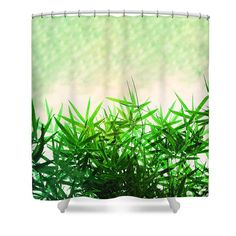 Green Bamboo Shower Curtain by Tracey Everington. This shower curtain is made from polyester fabric and includes 12 holes at the top of the curtain for simple hanging. The total dimensions of the shower curtain are wide x tall. Curtains For Sale, Art Designs, Fine Art America, Bamboo, Shower, Simple, Green, Artist, Fabric