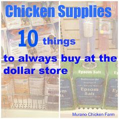 10 Chicken Supplies from the Dollar Store ( except the pedialite- make it via the recipe from the chicken chick - link in blog comments - electrolyte recipe)