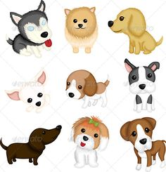 A vector illustration of different dog breeds. Vector illustration, zip archive contain eps 10 and high resolution jpeg.