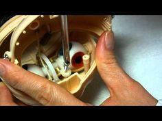 How to Blythe doll head opening eyes up gaze correction tutorial - YouTube Corregir la mirada
