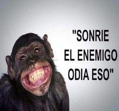 Sonrie el enemigo odia eso!!