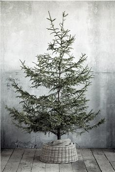 one of the best solutions weve seen for disguising the inevitable unsightly christmas tree stand the wicker tree skirt from terrain the wicker tree