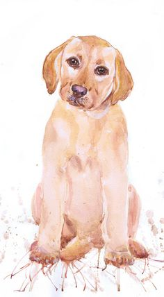 Golden Retriever Portrait art original watercolor by ValrArt