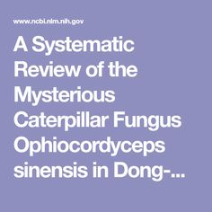 A Systematic Review of the Mysterious Caterpillar Fungus Ophiocordyceps sinensis in Dong-ChongXiaCao (冬蟲夏草 Dōng Chóng Xià Cǎo) and Related Bioactive Ingredients