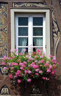 ❤ Window-Planter in Rheingau, Germany ❤ Window Box Flowers, Balcony Flowers, Window Boxes, Old Windows, Windows And Doors, Jardin Decor, Garden Windows, Through The Window, Belle Photo