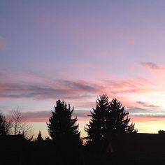 #nature#natur#sky#hinmel#cloud#wolke#stimmung#abendhimmel#einter#trees#bäume#licht#light#schatten#shadow#pictures#fotografia#fotografie#atmosphere#sorbetcolours#pastelfarben#sunset#sonnenuntergang#tannenbaum