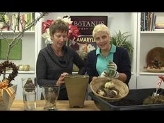 Episode to Plant & Grow Amaryllis Light up your indoor space with Amaryllis! They are so much fun to grow indoors and it's very easy to do. Garden Club, Have Some Fun, Greenery, Flower Arrangements, Make It Yourself, Plants, Lovely Things, Landscaping, Contemporary