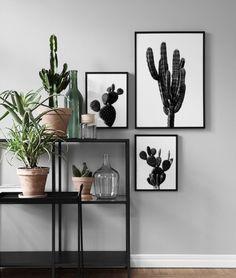 Black Cactus One Poster nel gruppo Poster / Fiori & Piante presso Desenio AB Decoration Cactus, Desenio Posters, Gold Poster, Cactus Pictures, Poster Design, Room Decor, Wall Decor, Wall Art, Black White Art