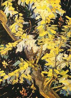 Vincent Van Gogh - Blossoming Akazienzweig