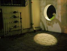 """Saatchi Online Artist: Dana Stirling; Color, Photography """"color night #5"""""""