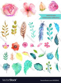 Watercolor floral collection mint and rose for beautiful design. Download a Free Preview or High Quality Adobe Illustrator Ai, EPS, PDF and High Resolution JPEG versions.