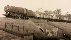 Bullied wartime Austerity 0-6-0 (Coffee Pot) Workhorse of the British Southern Region