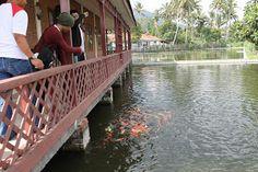 Paket Wisata Murah, Tour dan Pemancingan di Cipanas | Hotel di Garut | HdG Team