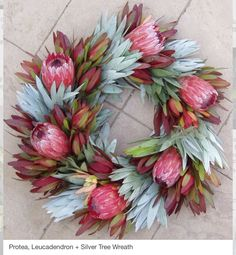 Christmas is on the Corner. Decorate your home with amazing Christmas wreaths. Here are some beautiful Christmas wreath decorating ideas you may consider. African Christmas, Aussie Christmas, Christmas Vacation, Christmas Holiday, Australian Christmas Tree, Summer Christmas Gifts, Christmas Yarn, Christmas Flowers, Nordic Christmas