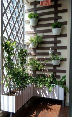 Small Balcony Design, Small Balcony Garden, Balcony Flowers, Small Balcony Decor, Balcony Plants, House Plants Decor, Balcony Ideas, Outdoor Balcony, Modern Balcony