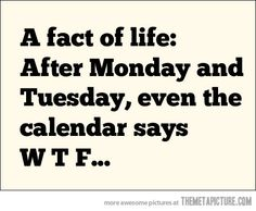 True fact of life…