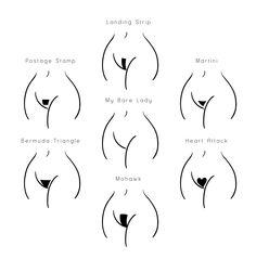 styles pubic hair