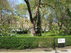 Dorset Square