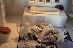 This is a miniature! What happens when you leave the puppies alone...LOL