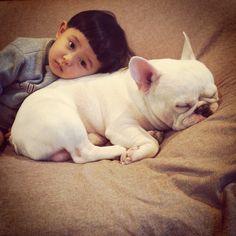 My Dear Bulldog, You Are One Of My Family Members | flipopular