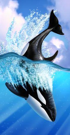 Orca 2 | Jerry LoFaro
