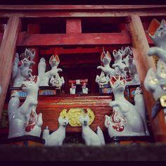 Giorno 13. Tsuwano. Percorro il tunnel di torii rossi che portano in cima al grande tempio dedicato a Inari divinità delle fertilità e del successo a proteggerla le sue fidate volpi bianche. Quello che mi colpisce non è il grande santuario ma un piccolo altare dove numerose volpi alla soglia di un torii più grande ne proteggono uno molto più piccolo come a indicare che la strada per il successo personale non è mai raggiunto completamente perché c'è sempre una altra porta da superare ma prima…