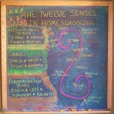 12 senses articles
