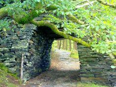 Hidden pathways somewhere to magic Garden Paths, Garden Bridge, Garden Landscaping, Travel Around The World, Around The Worlds, Natural Body Wash, Pathways, Garden Inspiration, Pond