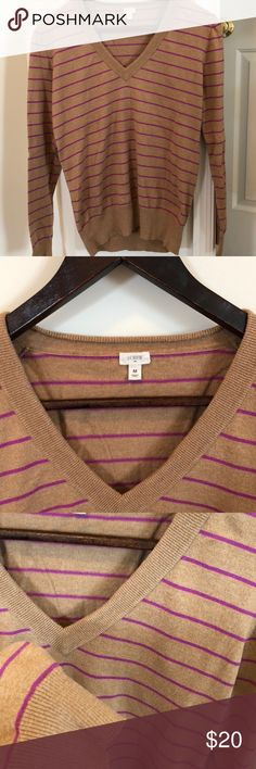 J. Crew Adorable Light Brown/Tan Striped Sweater Super cute and soft J.Crew Sweater very light for spring time! Cute magenta stripes for a pop of color! Very good condition! Offers welcomed!☺️ J. Crew Sweaters V-Necks
