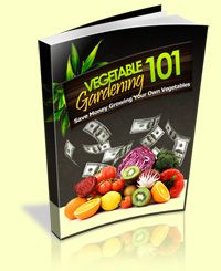 Want to create tour own veggie garden? Let's get started! Download this free ebook!