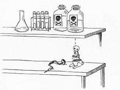 ¡Amo a los conejitos suicidas!, parte cuatro...