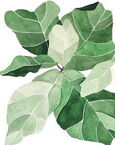 Fiddle Leaf Fig by Emily Grady Dodge on Artfully Walls