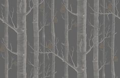 Woods and Pears (95/5031) - Cole & Son Wallpapers - The iconic woods has borne fruit, golden pears in shimmering metallic hues printed in white on midnight black. Available in other colours – please ask for a sample for a true colour match. Paste-the-wall product.
