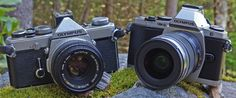 Olympus OM-D EM-5 Review: I'm Down With OM-D - Article by Mike Perlman