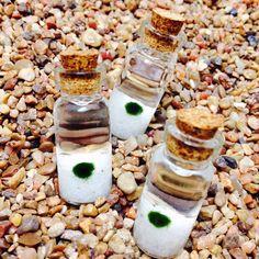 DIY mini moss ball terrariums and vials! Genuine Marimo balls. northwestkombucha.com