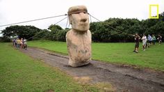Funny pictures about How the Easter Island statues may have been transported. Oh, and cool pics about How the Easter Island statues may have been transported. Also, How the Easter Island statues may have been transported.