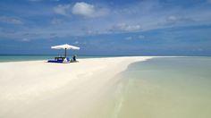 Pelican Island Philippines
