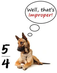 My blog entry for today about simplifying fractions.  And...I love the dogs!