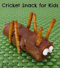 Cricket Snack for Kids - so cute!!!