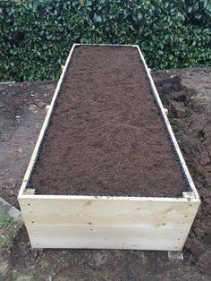 Raised Garden Beds, Raised Beds, Homesteading, Flower Arrangements, Diy And Crafts, Flowers, Furniture, Home Decor, Gardening