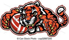 Vector - tiger volleyball - stock illustration, royalty free illustrations, stock clip art icon, stock clipart icons, logo, line art, EPS picture, pictures, graphic, graphics, drawing, drawings, vector image, artwork, EPS vector art