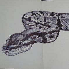 Realistic Animal Drawings, Dark Drawings, Cool Art Drawings, Pencil Art Drawings, Drawings Of Snakes, Snake Sketch, Snake Drawing, Snake Art, Snake Painting