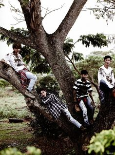 Mummy in the tree with the baby triplets Chanyeol, Suho, Chen and Baekhyun Exo Ot12, Suho Exo, Chanbaek, Park Chanyeol, Exo Kai, K Pop, Exo Dear Happiness, Exo Official, Exo Album