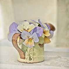 Violets & Watering Can Photograph purple and by MaleahTorney, $30.00