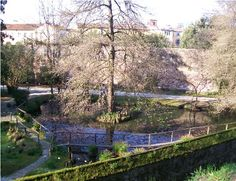 Orto Botanico, Lucca
