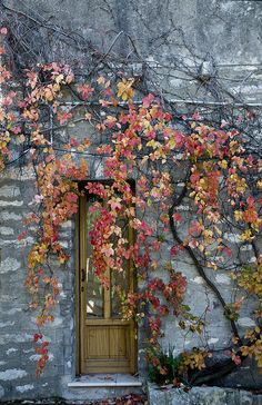 Love the fall colors with grey. - Charming Windows and Doors - Cool Doors, Unique Doors, When One Door Closes, Gates, Doorway, Windows And Doors, Stairways, Porches, Beautiful Places