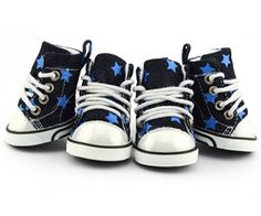 Parisian Pet Denim Star Converse Shoes @ Pupaholic.com