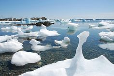 This may look like iceberg pieces, but it's not - it's sea ice, photographed in Twillingate in May 2009. What's the difference, you ask? Sea ice is new ice that forms every year, whereas icebergs are thousands of years old. (Geoff Meeker photo) #twillingate #sea ice