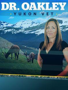 dr oakley yukon vet | Dr. Oakley, Yukon Vet Season 2 Episodes | TVGuide.com