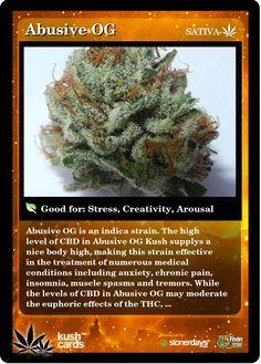 Abusive OG | Repined By 5280mosli.com | Organic Cannabis College | Top Shelf Marijuana | High Quality Shatter